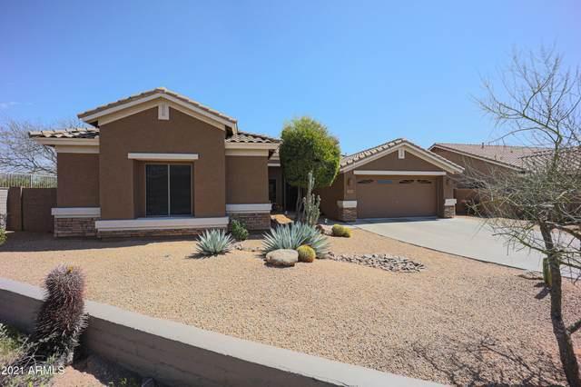 5541 E Thunder Hawk Road, Cave Creek, AZ 85331 (MLS #6226999) :: Yost Realty Group at RE/MAX Casa Grande