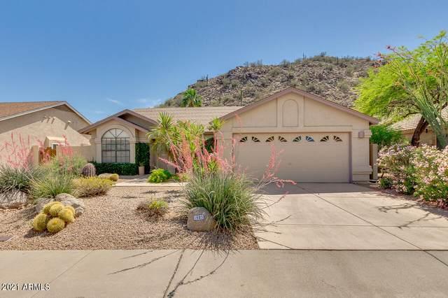 1903 E Behrend Drive, Phoenix, AZ 85024 (MLS #6227051) :: The Copa Team | The Maricopa Real Estate Company