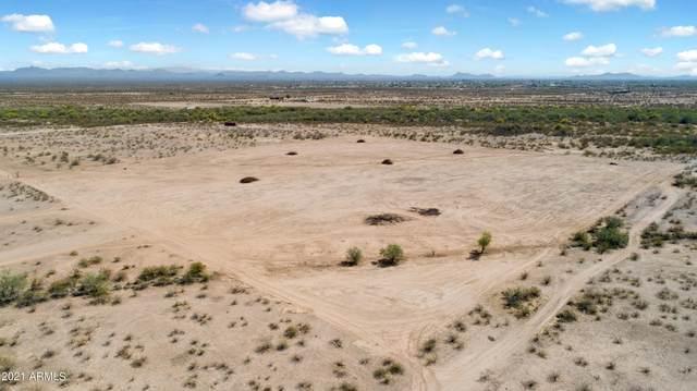 24130 W Dixileta Drive, Wittmann, AZ 85361 (MLS #6227071) :: Long Realty West Valley