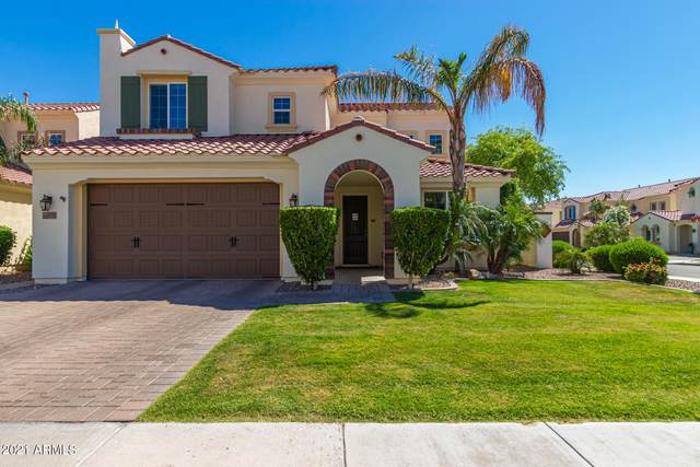 2371 W Desert Broom Place, Chandler, AZ 85248 (MLS #6227105) :: Openshaw Real Estate Group in partnership with The Jesse Herfel Real Estate Group