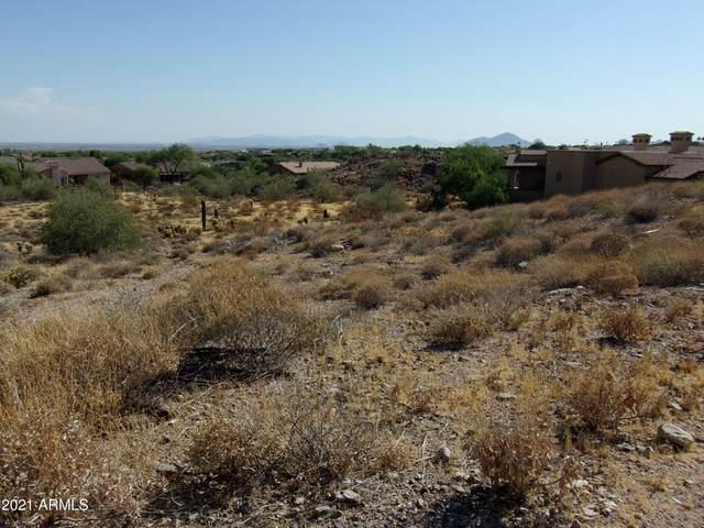 13016 E Summit Drive, Scottsdale, AZ 85259 (MLS #6227129) :: My Home Group