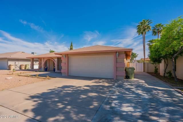 5519 W Beryl Avenue, Glendale, AZ 85302 (MLS #6227166) :: Yost Realty Group at RE/MAX Casa Grande
