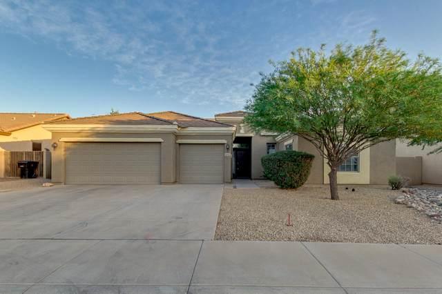 10311 E Los Lagos Vista Avenue, Mesa, AZ 85209 (MLS #6227167) :: The Copa Team | The Maricopa Real Estate Company