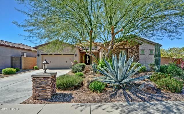 13423 W Chaparosa Way, Peoria, AZ 85383 (MLS #6227209) :: Midland Real Estate Alliance