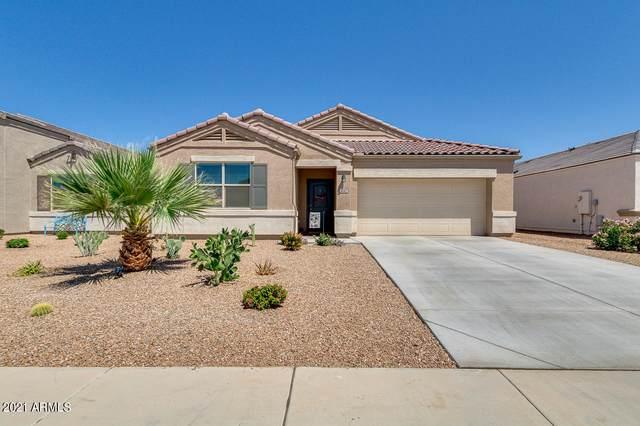 5042 E Andalusite Lane, San Tan Valley, AZ 85143 (MLS #6227351) :: Yost Realty Group at RE/MAX Casa Grande