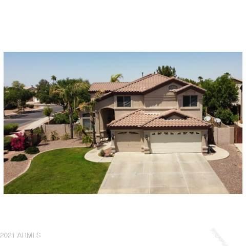 2920 E Cathy Drive, Gilbert, AZ 85296 (MLS #6227474) :: Yost Realty Group at RE/MAX Casa Grande