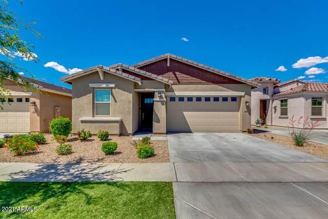 2918 E Wayland Drive, Phoenix, AZ 85040 (MLS #6227484) :: Yost Realty Group at RE/MAX Casa Grande