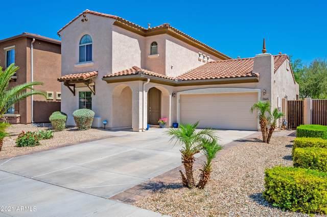 25615 N 51st Drive, Phoenix, AZ 85083 (MLS #6227494) :: Yost Realty Group at RE/MAX Casa Grande