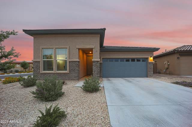 4018 W Coles Road, Laveen, AZ 85339 (MLS #6227502) :: Yost Realty Group at RE/MAX Casa Grande