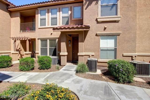 14250 W Wigwam Boulevard #522, Litchfield Park, AZ 85340 (MLS #6227528) :: Sheli Stoddart Team | M.A.Z. Realty Professionals