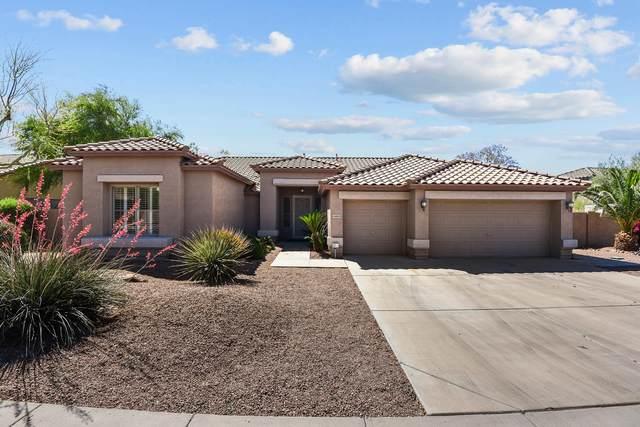 6815 W Greenbriar Drive, Glendale, AZ 85308 (MLS #6227636) :: Yost Realty Group at RE/MAX Casa Grande