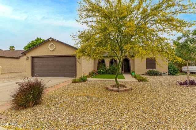 8119 W Krall Street, Glendale, AZ 85303 (MLS #6227639) :: Yost Realty Group at RE/MAX Casa Grande