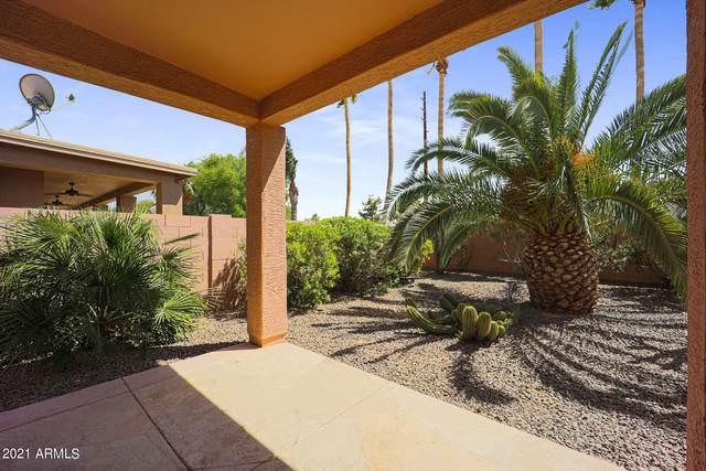 9021 E Stoney Vista Drive, Sun Lakes, AZ 85248 (MLS #6227652) :: The Copa Team | The Maricopa Real Estate Company