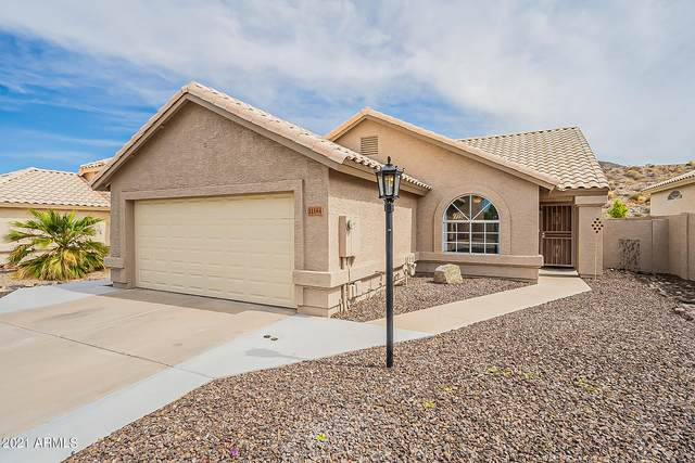 11144 E Laurel Lane, Scottsdale, AZ 85259 (MLS #6227713) :: Yost Realty Group at RE/MAX Casa Grande
