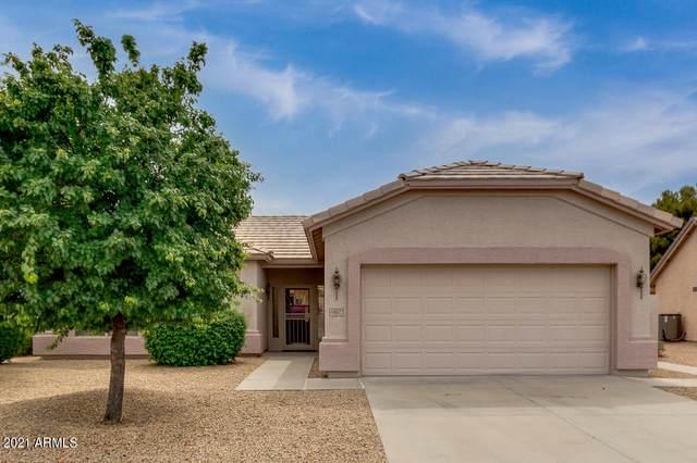 6402 S Callaway Drive, Chandler, AZ 85249 (MLS #6227742) :: Yost Realty Group at RE/MAX Casa Grande