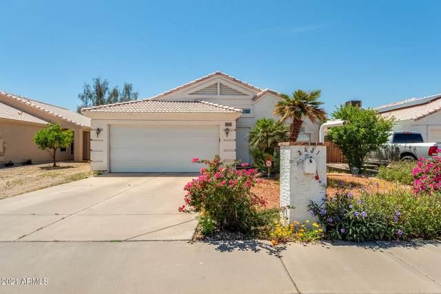3431 E Paradise Lane, Phoenix, AZ 85032 (MLS #6227761) :: Yost Realty Group at RE/MAX Casa Grande