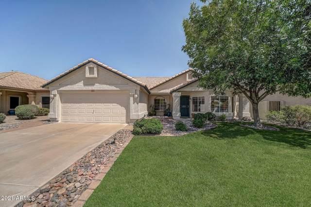 5330 W Whitten Street, Chandler, AZ 85226 (MLS #6227787) :: Yost Realty Group at RE/MAX Casa Grande