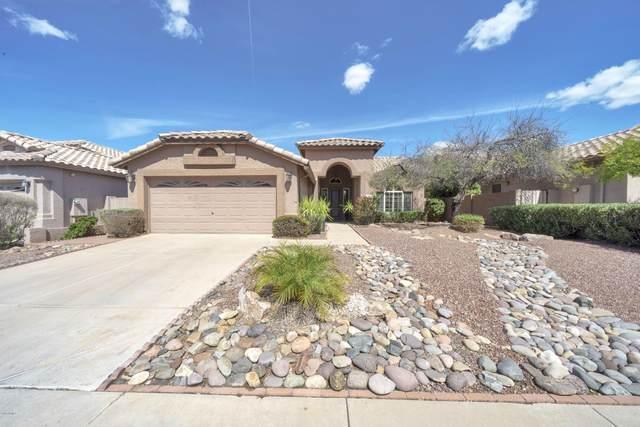 7214 E Black Rock Road, Scottsdale, AZ 85255 (#6227791) :: The Josh Berkley Team