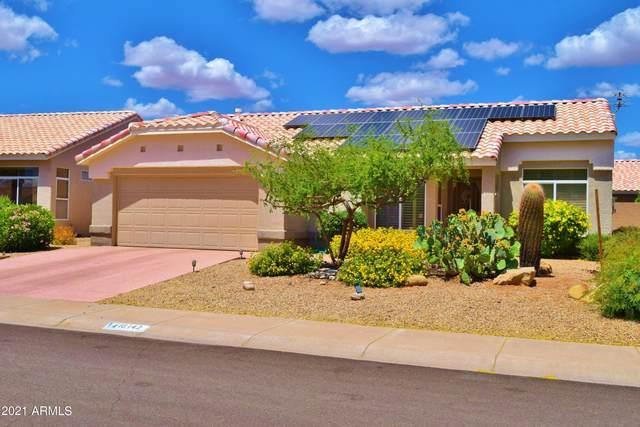 16142 W Greystone Drive, Sun City West, AZ 85375 (MLS #6227864) :: Yost Realty Group at RE/MAX Casa Grande