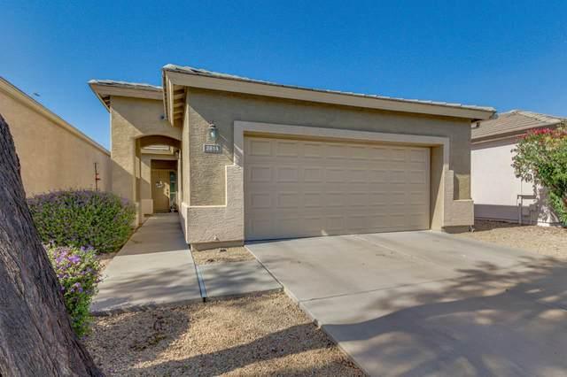 2814 E Karen Drive, Phoenix, AZ 85032 (MLS #6227865) :: Long Realty West Valley