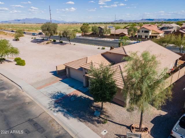 25537 W Primrose Lane, Buckeye, AZ 85326 (#6227869) :: The Josh Berkley Team