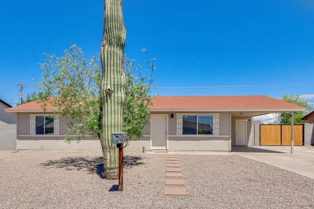 11334 E Elton Avenue, Mesa, AZ 85208 (#6227927) :: The Josh Berkley Team