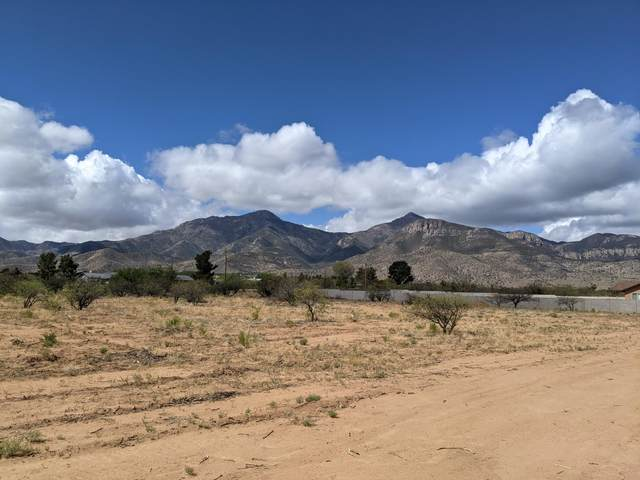 Parcel B S Calle De La Mango, Hereford, AZ 85615 (MLS #6227950) :: ASAP Realty