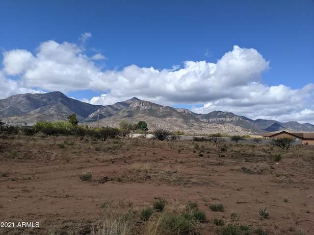 Parcel C S Calle De La Mango, Hereford, AZ 85615 (MLS #6227955) :: ASAP Realty