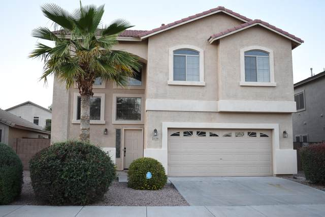 17258 W Meghan Drive, Goodyear, AZ 85338 (MLS #6228002) :: Yost Realty Group at RE/MAX Casa Grande