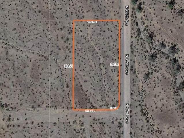 555 N 479th Avenue, Tonopah, AZ 85354 (MLS #6228047) :: The Newman Team