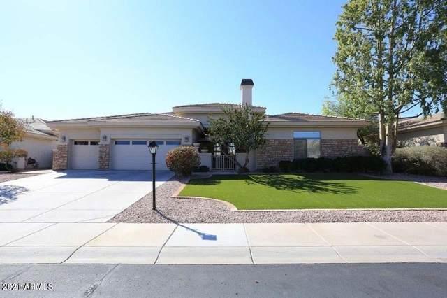 6267 E Wilshire Drive, Scottsdale, AZ 85257 (MLS #6228086) :: Yost Realty Group at RE/MAX Casa Grande