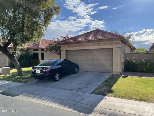 877 N Kenneth Place, Chandler, AZ 85226 (MLS #6228107) :: The Luna Team