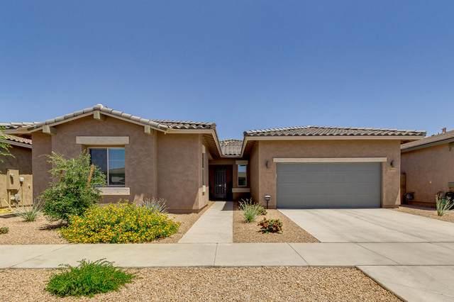 23095 S 230TH Street, Queen Creek, AZ 85142 (MLS #6228122) :: Kepple Real Estate Group