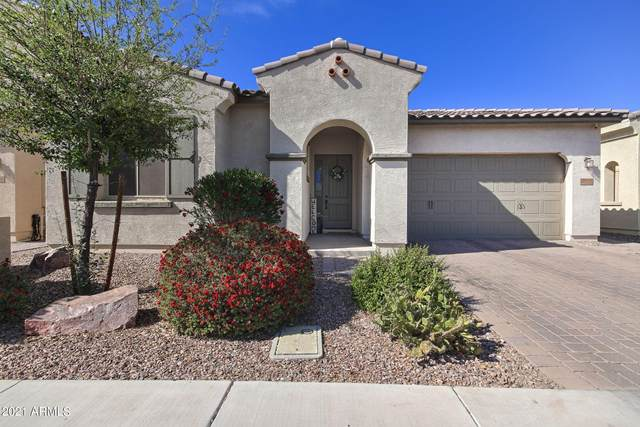 2920 E Citrus Way, Chandler, AZ 85286 (MLS #6228210) :: Yost Realty Group at RE/MAX Casa Grande