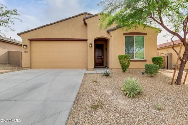 11024 S 175TH Lane, Goodyear, AZ 85338 (MLS #6228261) :: Executive Realty Advisors