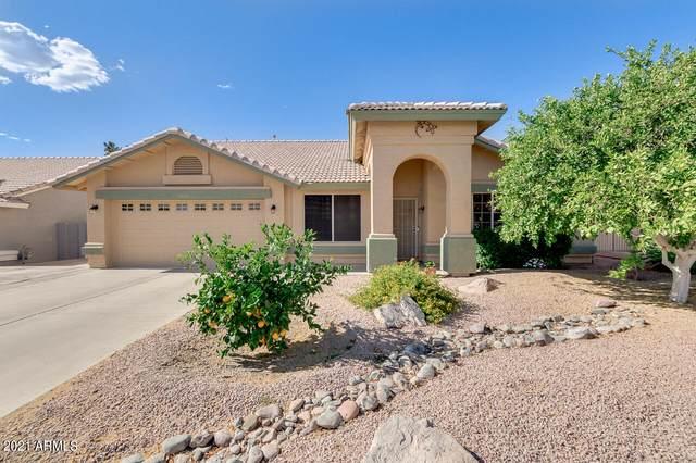 6554 E Melrose Street, Mesa, AZ 85215 (MLS #6228263) :: Yost Realty Group at RE/MAX Casa Grande