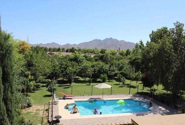 25313 S Valencia Avenue, Queen Creek, AZ 85142 (MLS #6228288) :: Yost Realty Group at RE/MAX Casa Grande