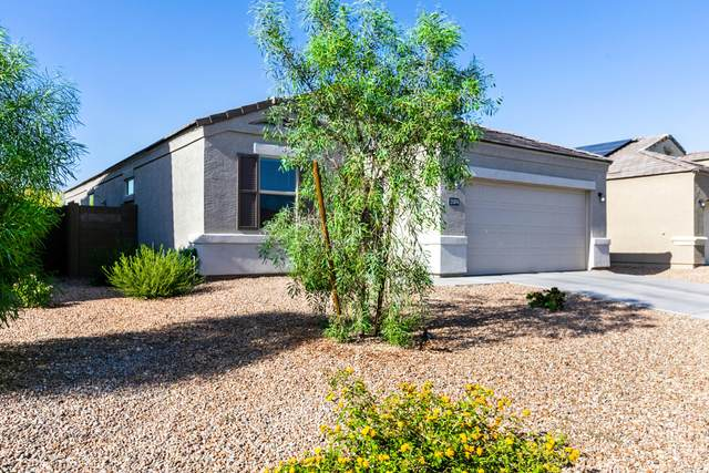 31074 W Weldon Avenue, Buckeye, AZ 85396 (MLS #6228308) :: Yost Realty Group at RE/MAX Casa Grande