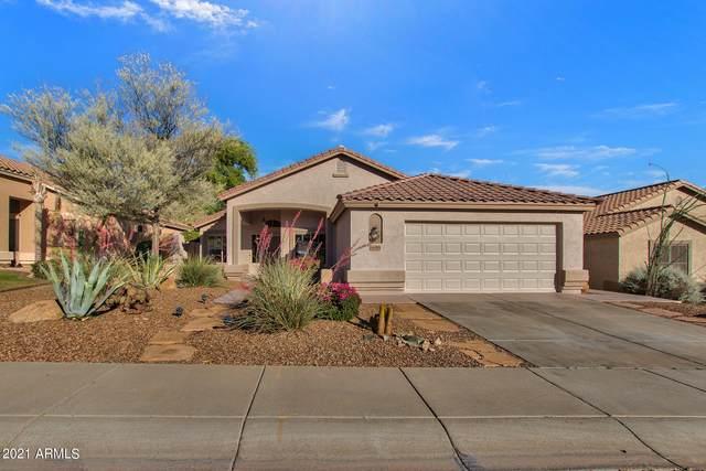 16045 S 18TH Avenue, Phoenix, AZ 85045 (MLS #6228352) :: The Luna Team