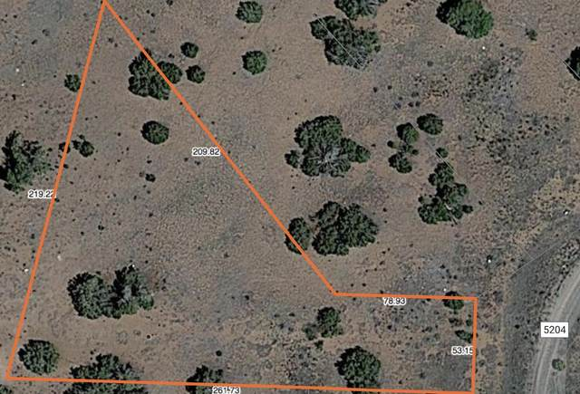 1 County Road 5204, Concho, AZ 85924 (MLS #6228365) :: Conway Real Estate