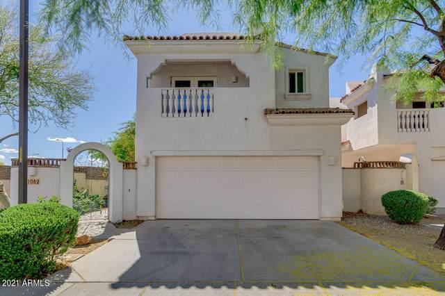 1062 N Henry Drive, Chandler, AZ 85224 (MLS #6228398) :: Yost Realty Group at RE/MAX Casa Grande