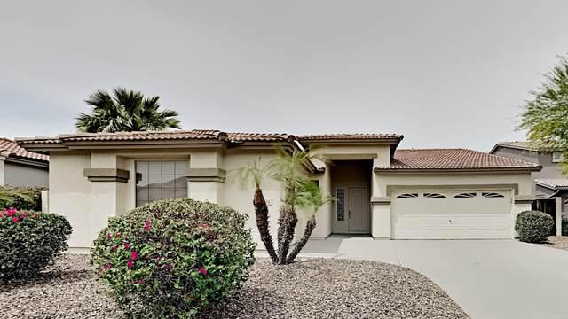 204 W Teakwood Place, Chandler, AZ 85248 (MLS #6228432) :: Klaus Team Real Estate Solutions