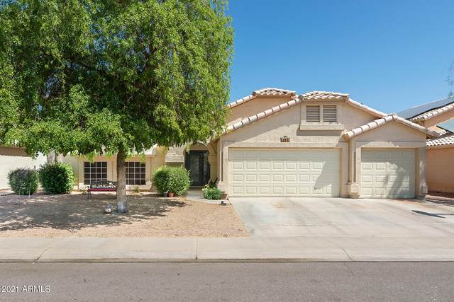 5600 W Megan Street, Chandler, AZ 85226 (MLS #6228460) :: Yost Realty Group at RE/MAX Casa Grande