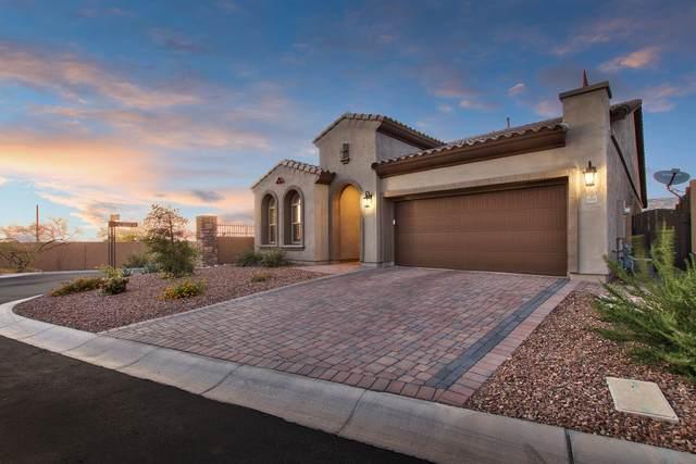 6916 E Quince Street, Mesa, AZ 85207 (MLS #6228471) :: Klaus Team Real Estate Solutions
