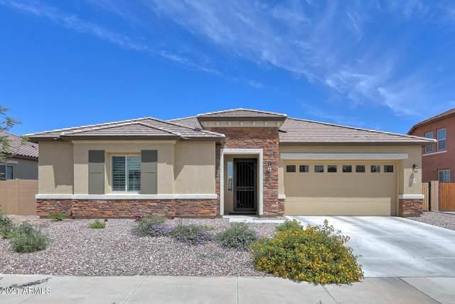 22258 E Tierra Grande Court, Queen Creek, AZ 85142 (MLS #6228481) :: Yost Realty Group at RE/MAX Casa Grande