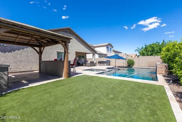 3041 E Melrose Street, Gilbert, AZ 85297 (MLS #6228513) :: Yost Realty Group at RE/MAX Casa Grande