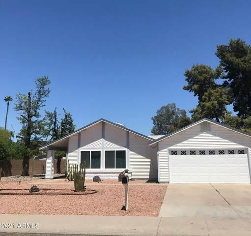 2434 W Kathleen Road, Phoenix, AZ 85023 (MLS #6228533) :: Yost Realty Group at RE/MAX Casa Grande