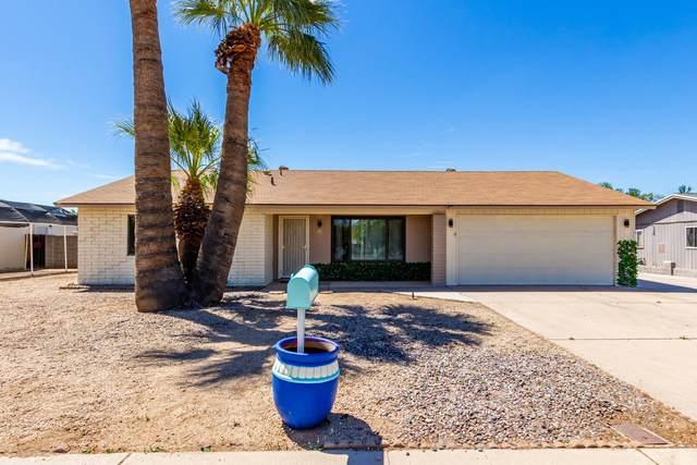 3617 W Voltaire Avenue, Phoenix, AZ 85029 (MLS #6228595) :: Yost Realty Group at RE/MAX Casa Grande