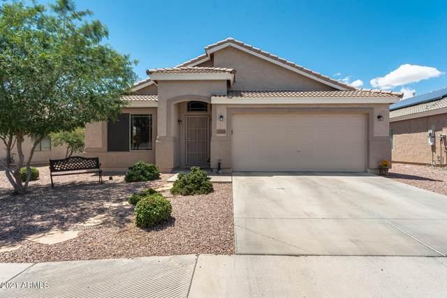14166 N 133RD Drive, Surprise, AZ 85379 (#6228660) :: The Josh Berkley Team