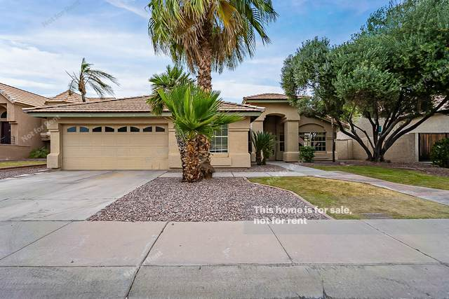 6734 W Piute Avenue, Glendale, AZ 85308 (MLS #6228666) :: Yost Realty Group at RE/MAX Casa Grande